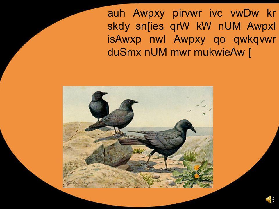 auh Awpxy pirvwr ivc vwDw kr skdy sn[ies qrW kW nUM AwpxI isAwxp nwl Awpxy qo qwkqvwr duSmx nUM mwr mukwieAw [